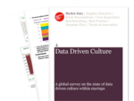 Cover for Data Driven Culture Survey Report