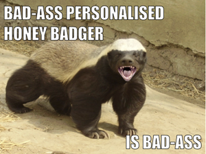 Image of a honey badger - social data is the 'honey badger' of personalisation