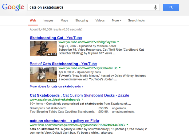 blended serp cats on skateboards