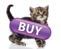 Purple Buy Button with Kitten
