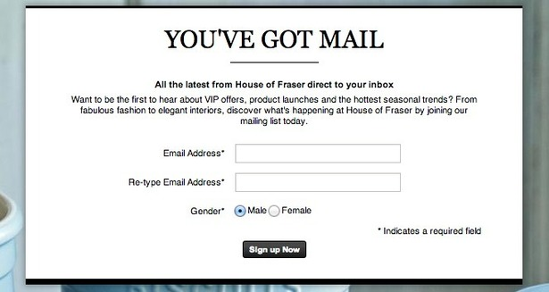 Email Sign Up Forms A Look At How 16 Fashion Retailers