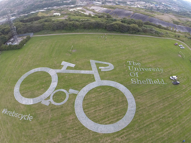 uni of sheffiedl marketing stun at le tour