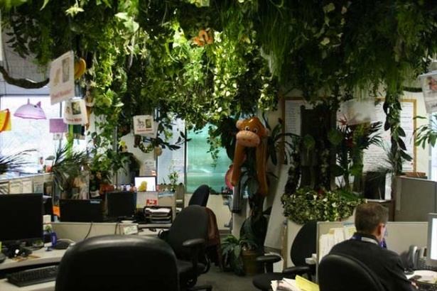 Ten Lessons Zappos Can Teach Us About Staff And Customer