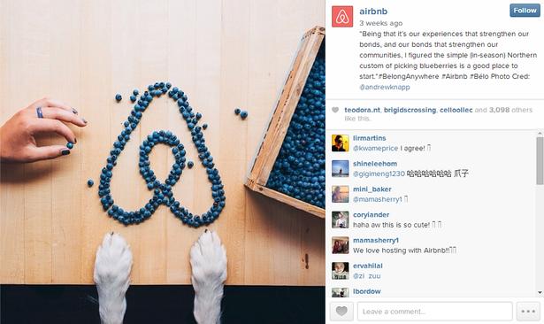 airbnb logo instagram