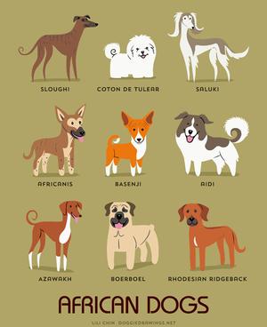https://assets.econsultancy.com/images/resized/0005/4282/dogs-blog-half.png