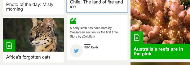 bbc earth tweet