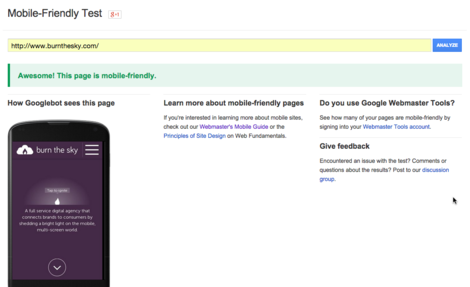 Google result for mobile friendly home page