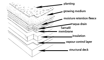 Green roofs cross section diagram