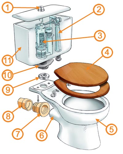 Toilet Seat Fitting Types