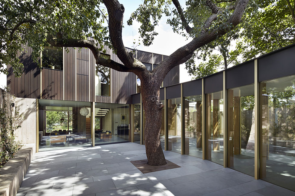 contemporary self build with pear tree in courtyard