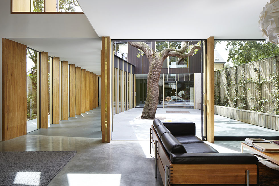 concrete outside inside space with glass corridor and pear tree