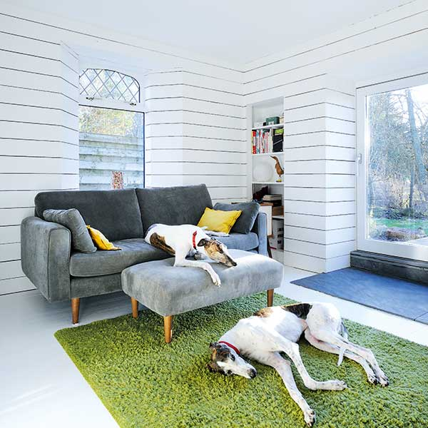 scandi style living room with grey sofas, green rug and relaxing dogs