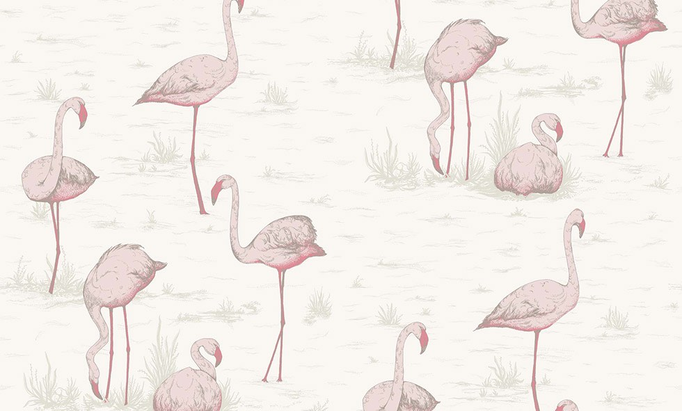 Cole&son-flamingos