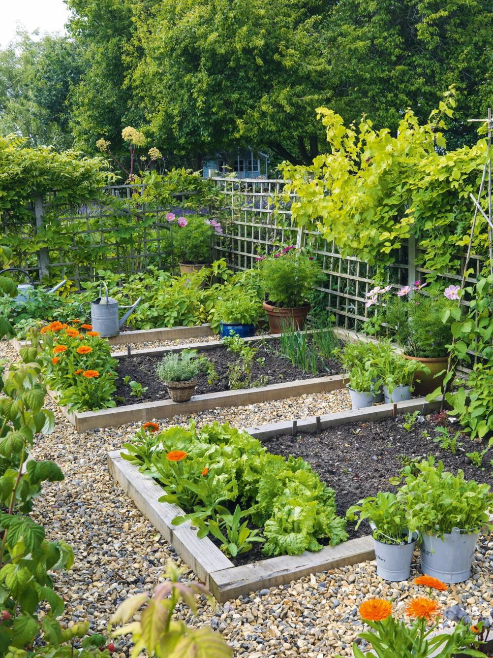 Floral family garden Period Living