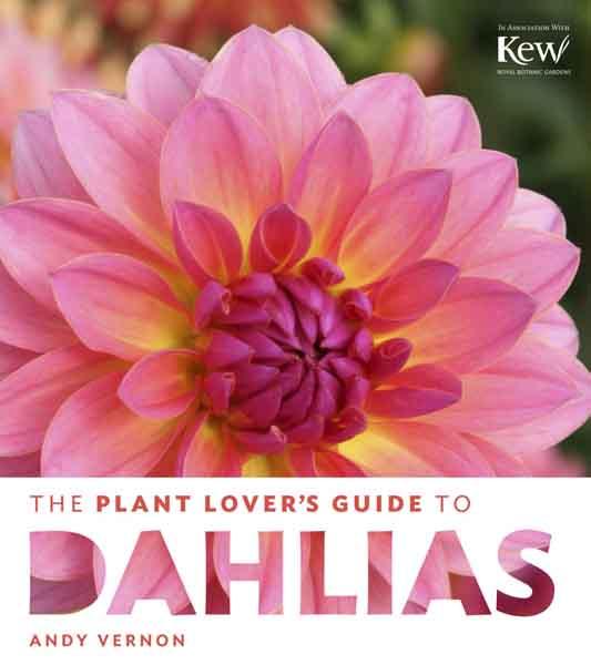 dahlia-book-cover-1002x1127