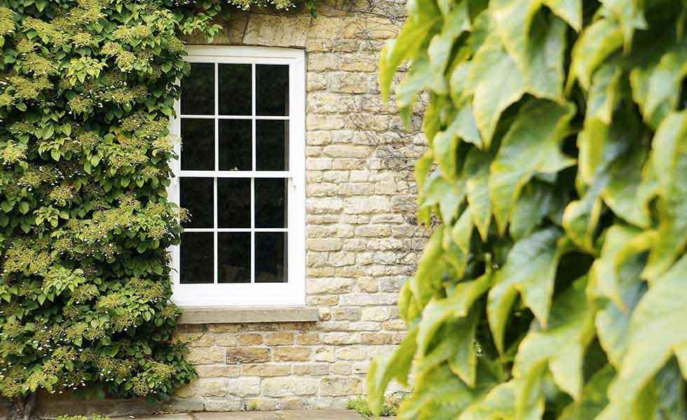 MW-The-Old-Hall-15-sash-window