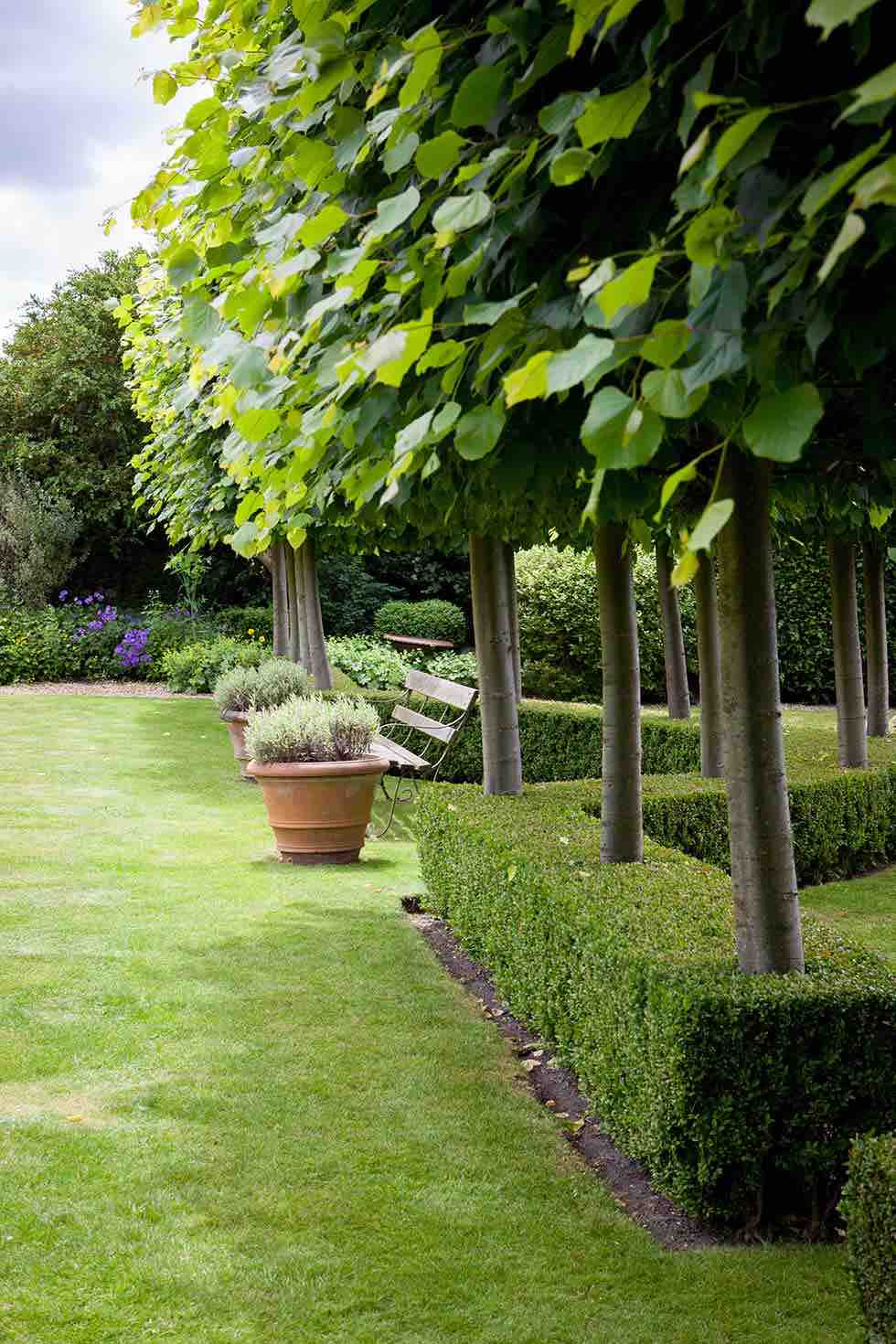 repetition of trees in semi-formal gardens