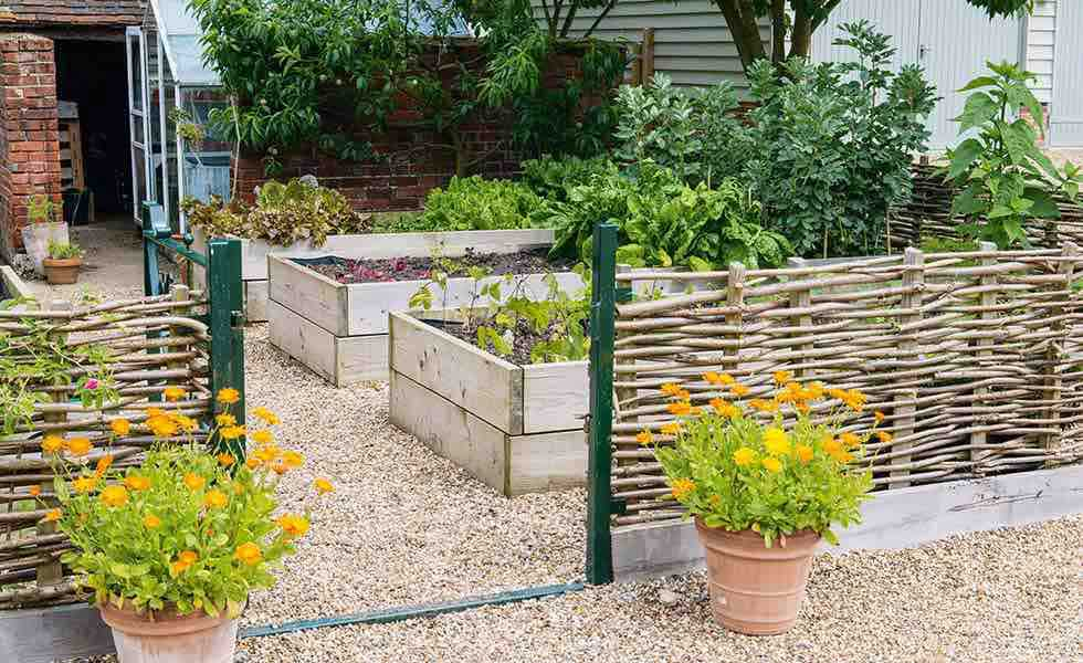 kitchen gardens with raised beds and wicker fencing