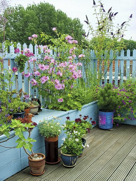 Container gardening for small spaces period living for Easy garden ideas for small spaces