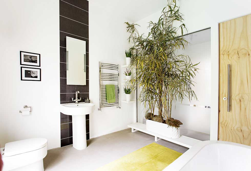 plant filled bathroom in a stone barn conversion