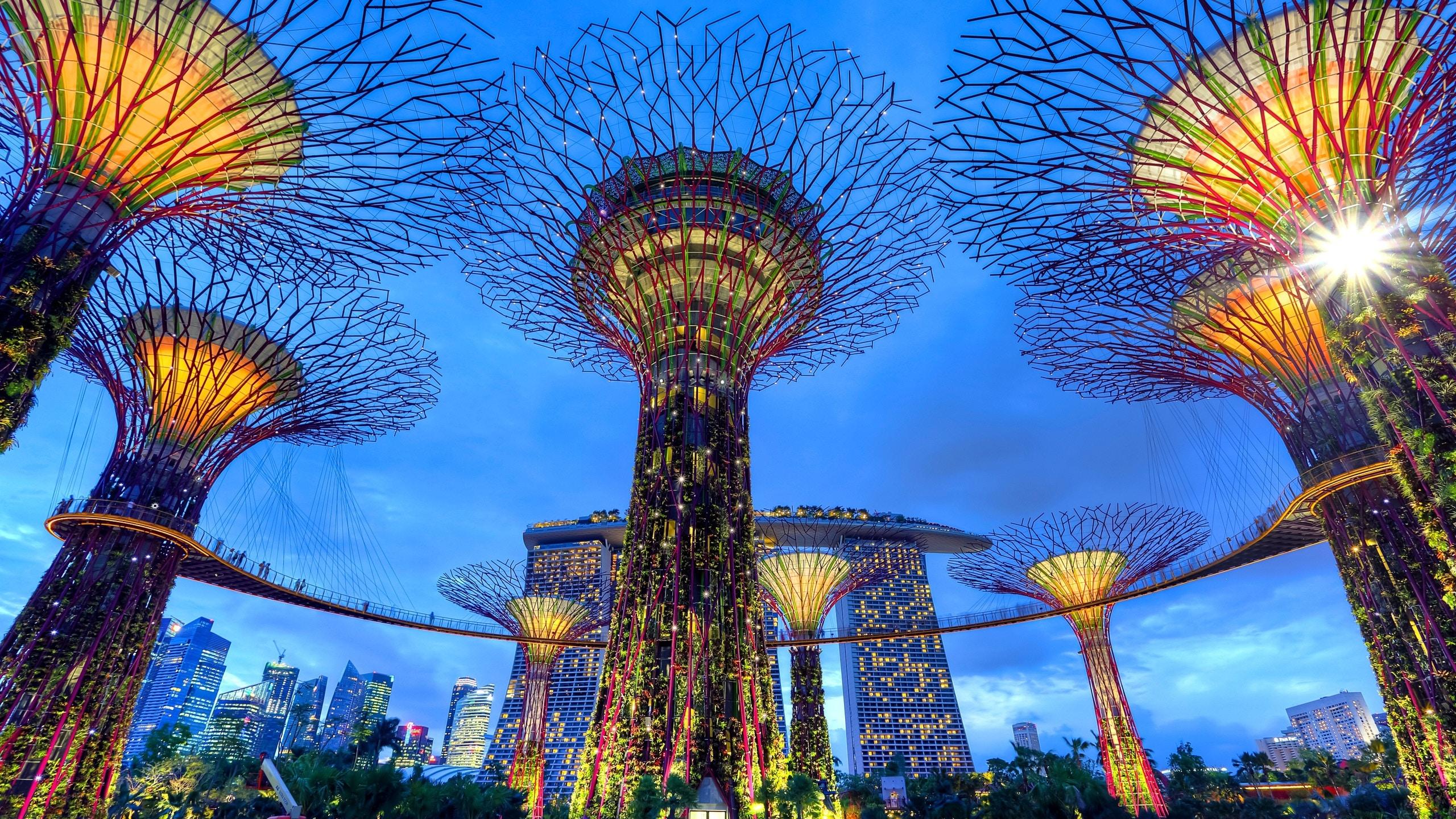 Singapur je ideální město k dlouhému přestupu. Když budete mít čas, můžete se dokonce připojit na bezplatnou tour městem, kterou organizuje letiště
