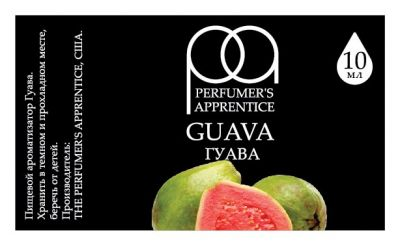 the feasibility of guava