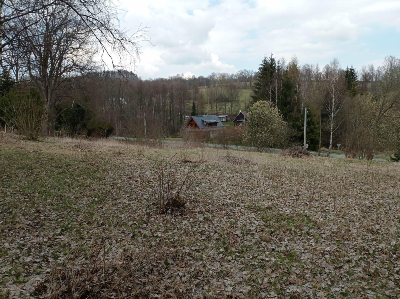 Dolní Moravice 4