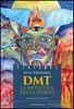 rick-Strassman-dmt-la-molecola-dello-spirito-recensione-libro-piccola