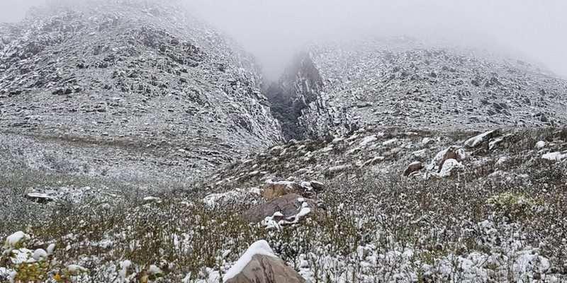 Побито 19 погодных рекордов: Южную Африку неожиданно засыпало снегом (фото, видео)