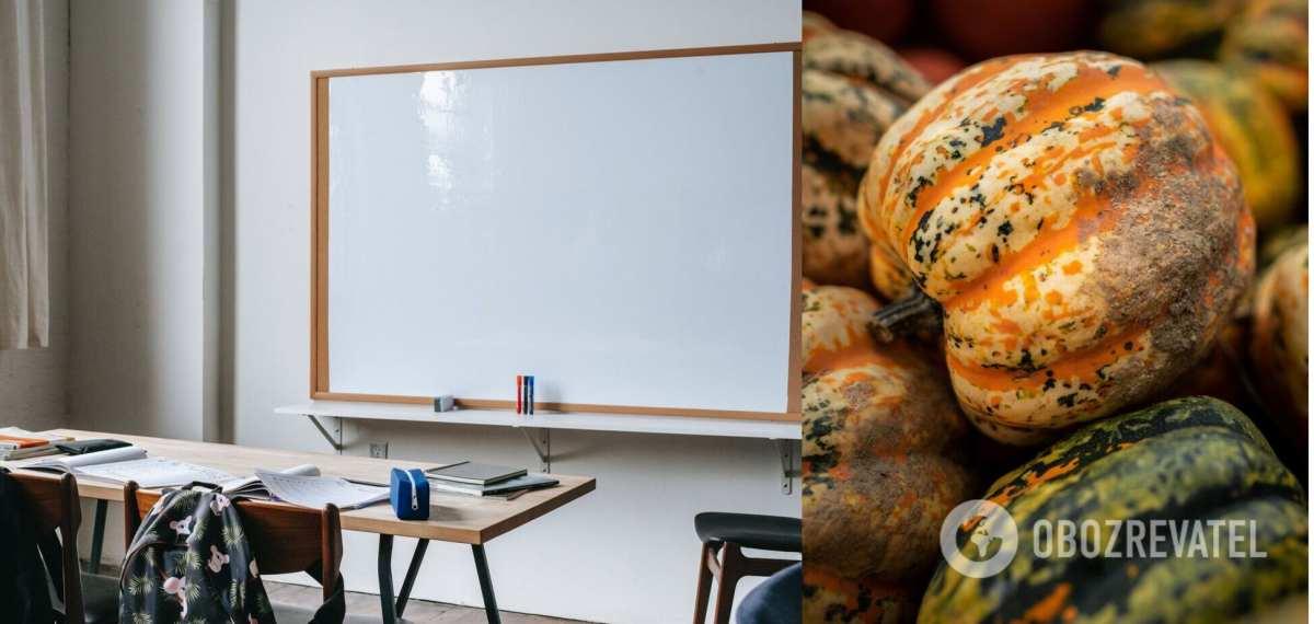 На Черкасчине школьников отправили носить тыквы с поля вместо уроков труда