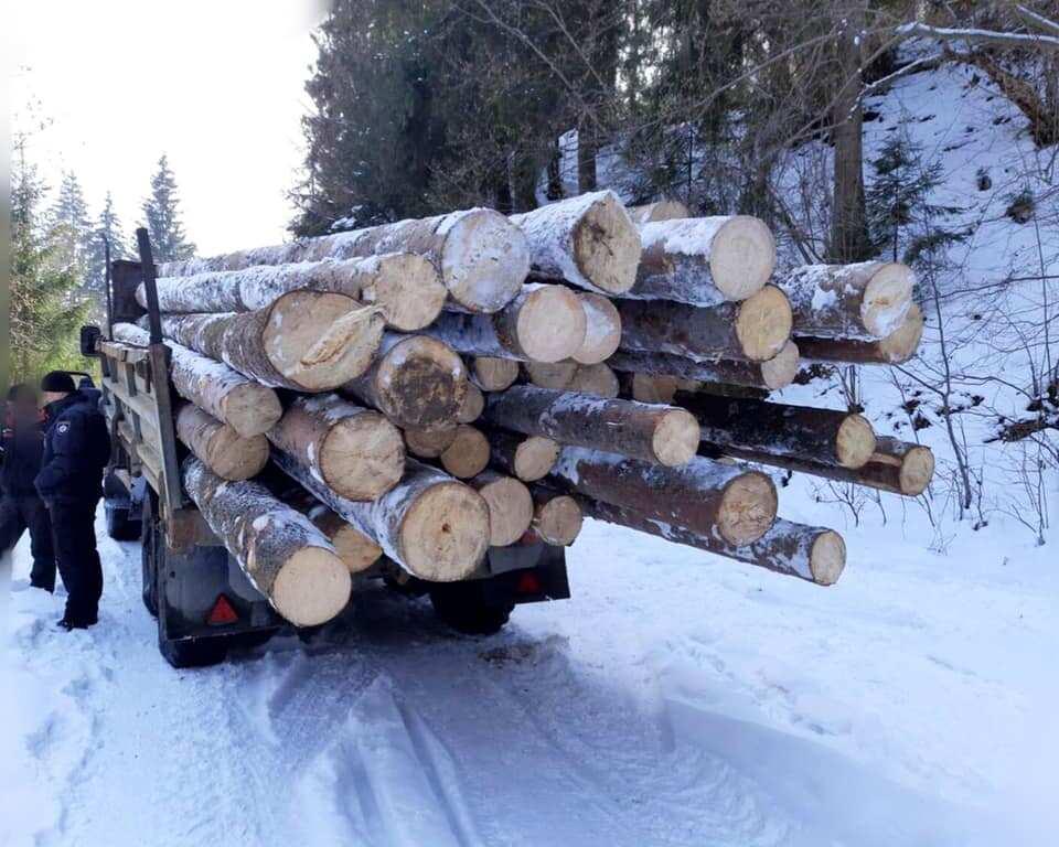 На Верховинщині поліцейські зупинили дві вантажівки з краденим лісом