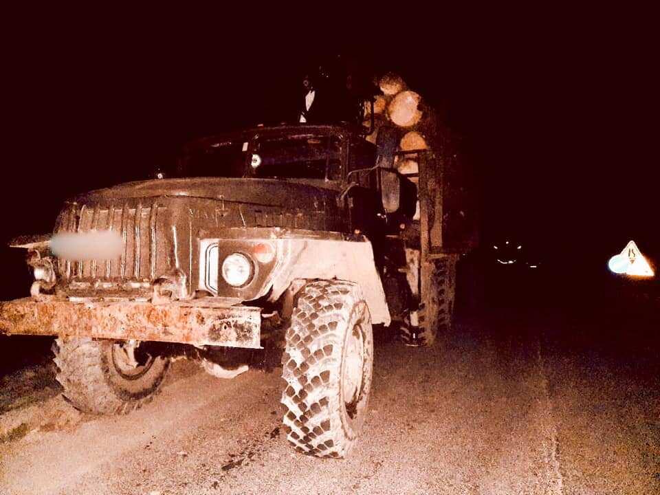 На Яремчанщині піймали крадія лісу з Верховинського району (ФОТОФАКТ)
