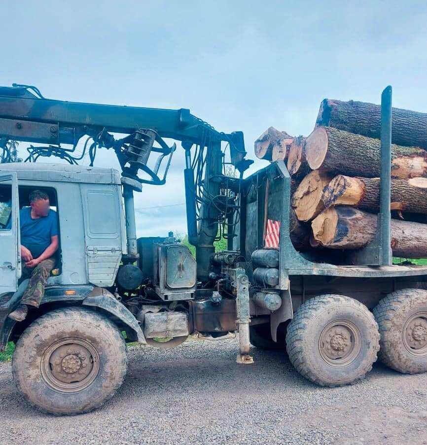 На Коломийщині впіймали дві вантажівки з краденим дубом (ФОТОФАКТ)