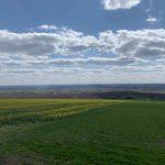 На Прикарпатті продали найменше землі в Україні (ІНФОГРАФІКА)