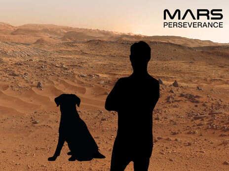 """NASA предлагает всем желающим """"сфотографироваться на Марсе"""""""