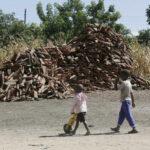 В Зимбабве 66-летний мужчина стал отцом 151 ребенка. В июне он планирует завести 17-ю жену