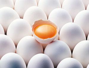 В Україні скорочується виробництво яєць, що призводить до їх здорожчання