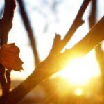 Будет ветрено, влажно и холодно: какой погодой ознаменуется конец зимы в Украине