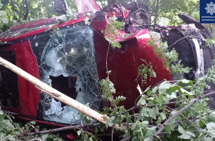 На трасі в Житомирській області автомобіль з'їхав у кювет і перекинувся