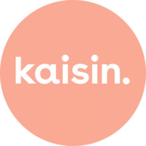 Company logo: kaisin