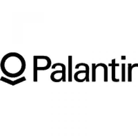 Company logo: palantir technologies