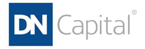 Company logo: dn capital