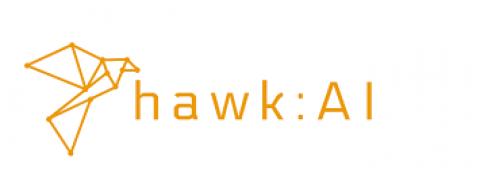 hawk:AI
