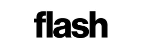 Company logo: flash