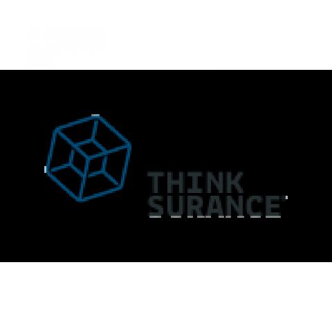 Company logo: thinksurance