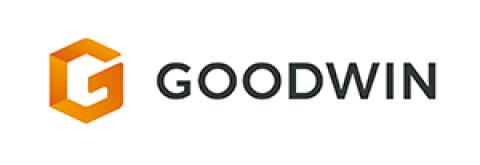 Company logo: goodwin