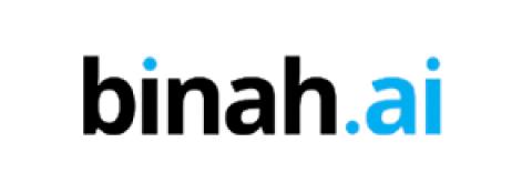 Company logo: binah.ai
