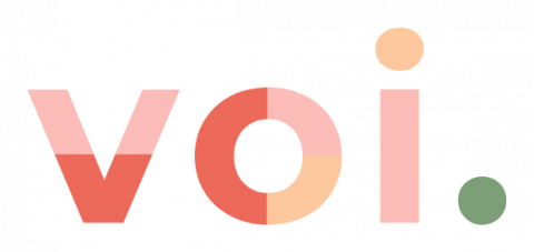 Company logo: voi technology