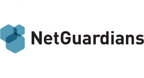 Company logo: netguardians