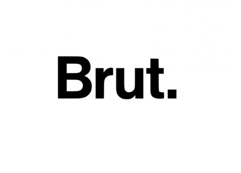 Company logo: brut